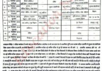 Rajasthan Board 5th Class Time Table 2020 RBSE 5th Exam Date